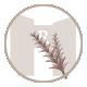 icone romarin du mas de la rivoire