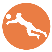 Logo beach volley