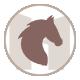 icone équitation des gites et chambre d'hotes du mas de la rivoire